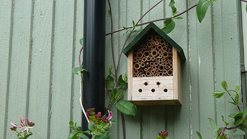 Bee-house-PS