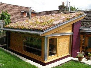 Sedum blanket system green roof