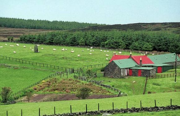 Image result for kintyre scotland mccartney farm