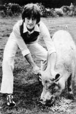 Imagine postcard - John Lennon with a pig