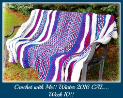 Crochet with me week 10