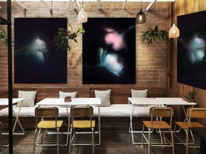 Translucent art hang on a wall