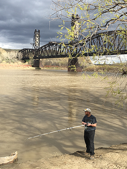 A fisherman stands on the bank of the Yellowstone River attempting to snag a paddlefish.