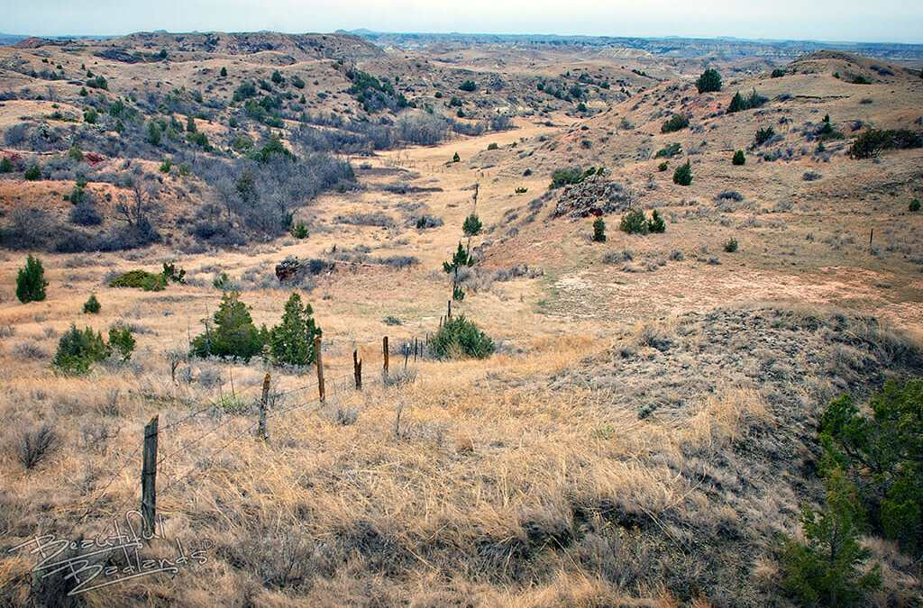 Fences – from the Badlands Highway Writer