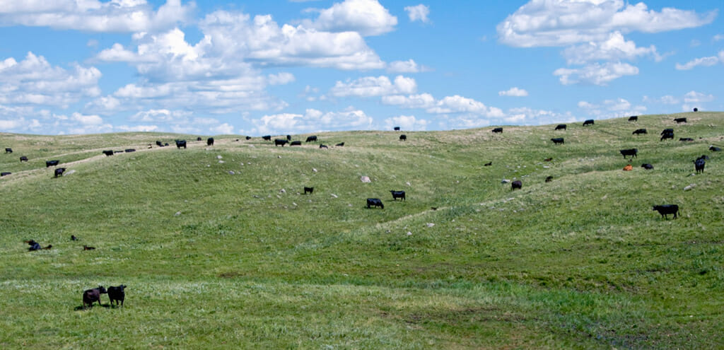 Scenic Snapshots of the most spectacular scenic byway in ND