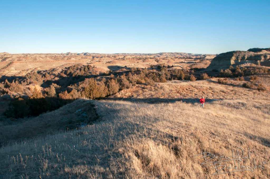 badlands prairie grassland