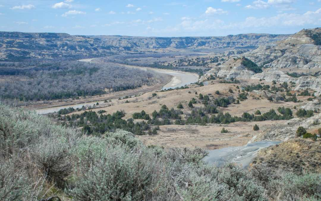 Sage and Overlook Little Missouri River, Theodore Roosevelt National Park, north unit