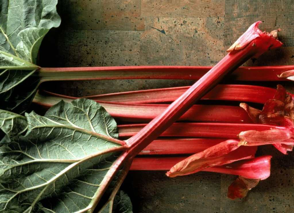 Red Rhubarb Ready to Slice