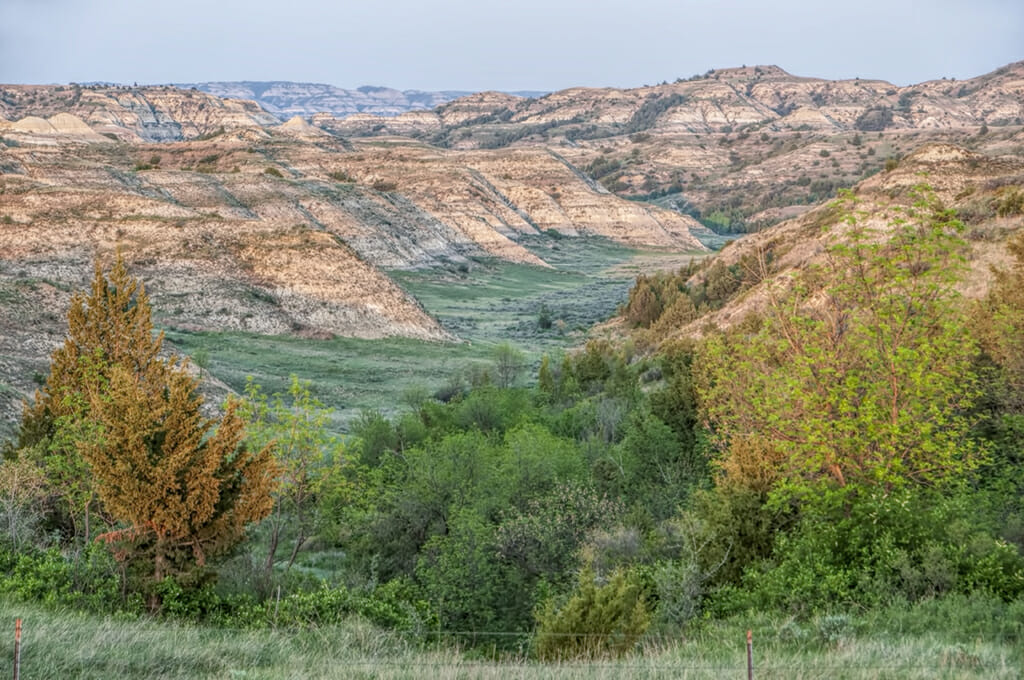 bloggers will see Badlands valley medora elkhorn ranch