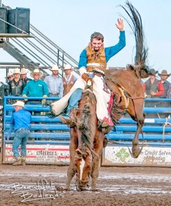 bareback cowboy rodeo