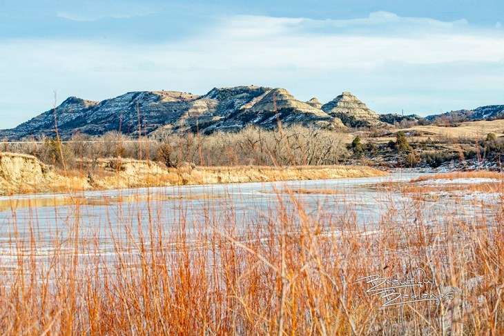 Little Missouri River and willow bar