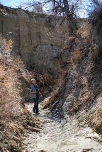 Bennett Creek tributary steep walls