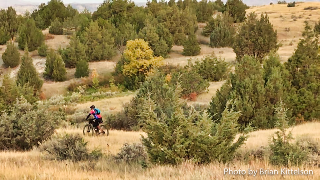 Late September colors begin to change along the Maah Daah Hey Trail in the North Dakota Badlands.