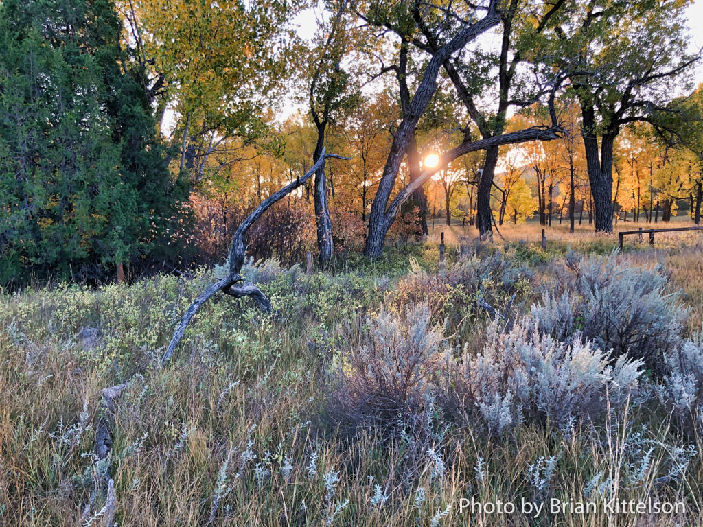 The morning sun peeks over the eastern bluffs of the Little Missouri River. This is the scene from the log home of Theodore Roosevelt, how he began his day while ranching northwest of Medora, North Dakota.