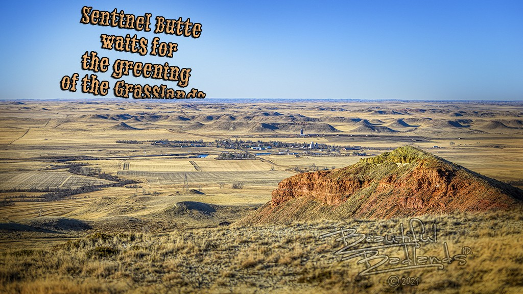Before the Greening of the Badlands, Brown is Beautiful at Sentinel Butte