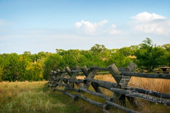 wood fence birnt hills