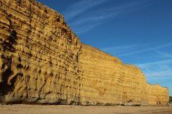 Burton Cliff, Burton Bradstock