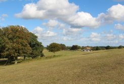 Looking east, from Bolton's Bench, Lyndhurst, New Forest