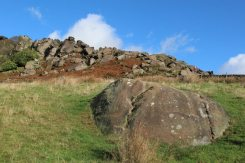 Gritstone boulder, on path to The Roaches