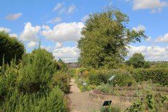 Herb Garden, Sulgrave Manor, home of George Washington's ancestors, Sulgrave