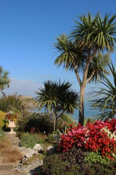 Hotel garden, above South Beach, Tenby