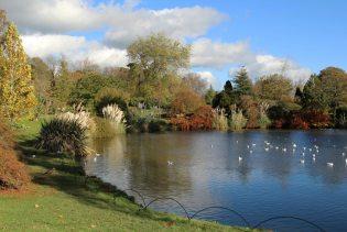 Mansion Pond, Wakehurst Place, Ardingly
