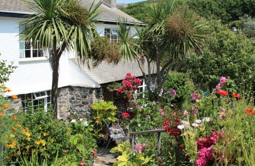 Cottage on path to Cadgwith Cove, Cadgwith