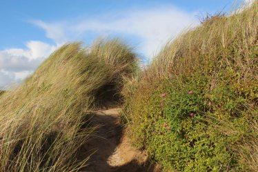 Sand dunes, beside Camel Estuary, Rock
