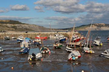 Harbour, Lyme Regis
