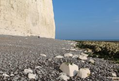 Beach, Birling Gap
