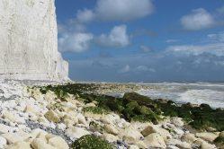 Chalk boulders on wave cut platform, east of Birling Gap