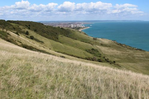 Eastbourne and Lower Slopes, Beachy Head