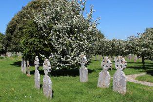 May blossom, St. Wilfrid's Churchyard, Church Norton