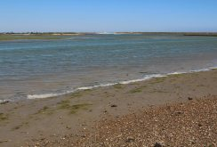 Pagham Harbour, Church Norton