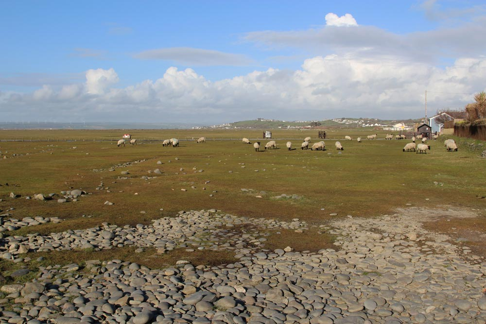 Northam Burrows Country Park, Westward Ho!