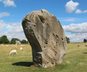 Barber Surgeon Stone, South West Sector, Avebury Henge