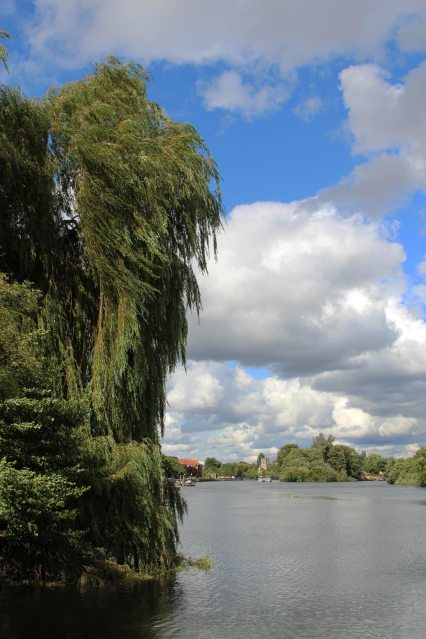 River Thames, from Radnor Gardens, Twickenham