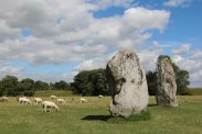 Sheep amongst stones, South East Sector, Avebury Henge