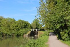 Towpath beside Maton Lock 49, Kennet and Avon Canal, Devizes
