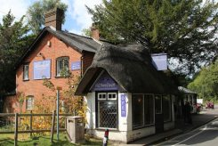 Old Farmhouse Restaurant and Tea Rooms, Burley, New Forest