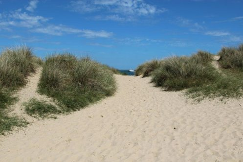 Path through sand dunes to beach, Shell Bay, Studland