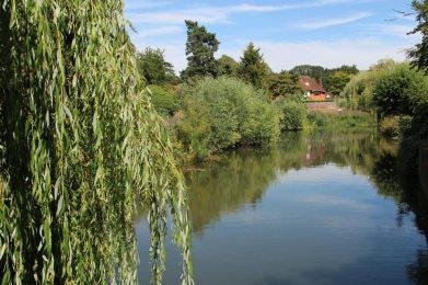 River Mole, Cobham Mill, Cobham
