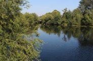 River Stour, Dedham