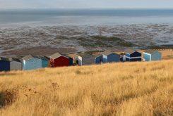 Beach huts, Tankerton Slopes, Whitstable