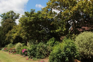 Dickie's Border, Osterley Park and House, Isleworth