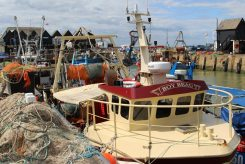 Fishing boat, Boy Beau, Whitstable Harbour, Whitstable