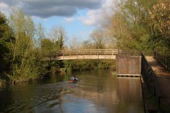 Devizes to Westminster International Canoe Race 2014, Kennet and Avon Canal, near Woolhampton