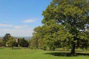 Parkland, Chastleton House, Chastleton
