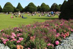 The Great Fountain Garden, Hampton Court Palace