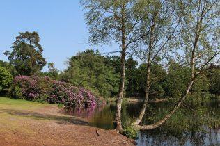Obelisk Pond, Virginia Water